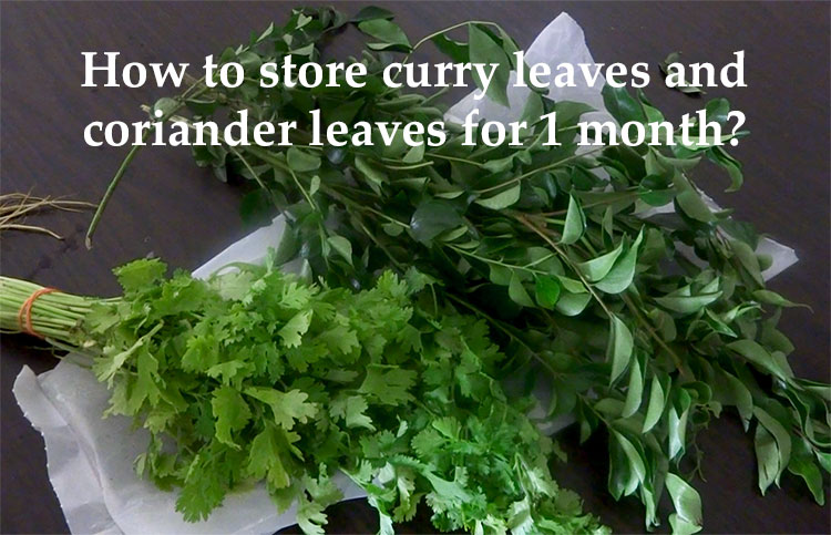 how to store leaves